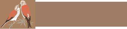 Интернет-магазин HEMPPRODUCT Логотип
